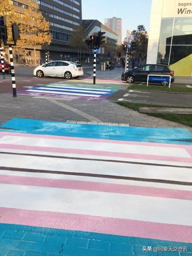 """欧洲首个""""跨性别斑马线""""在荷兰亮相"""
